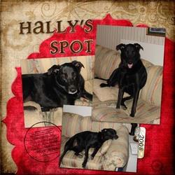 Hallys Spot